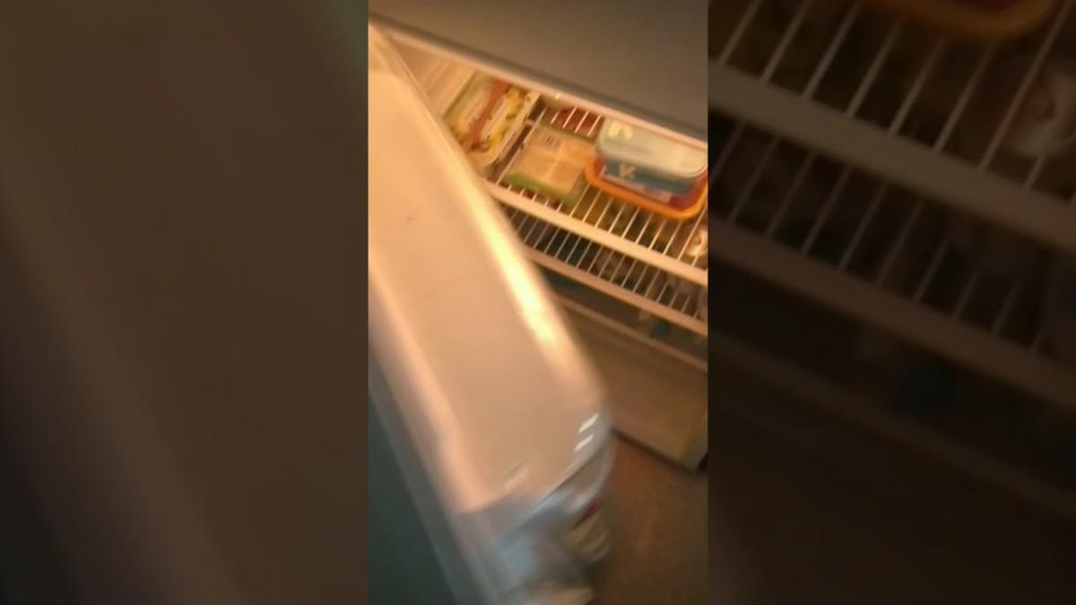 Daylightpeople.com Inside actors Studio's fridge 😄🥪☕